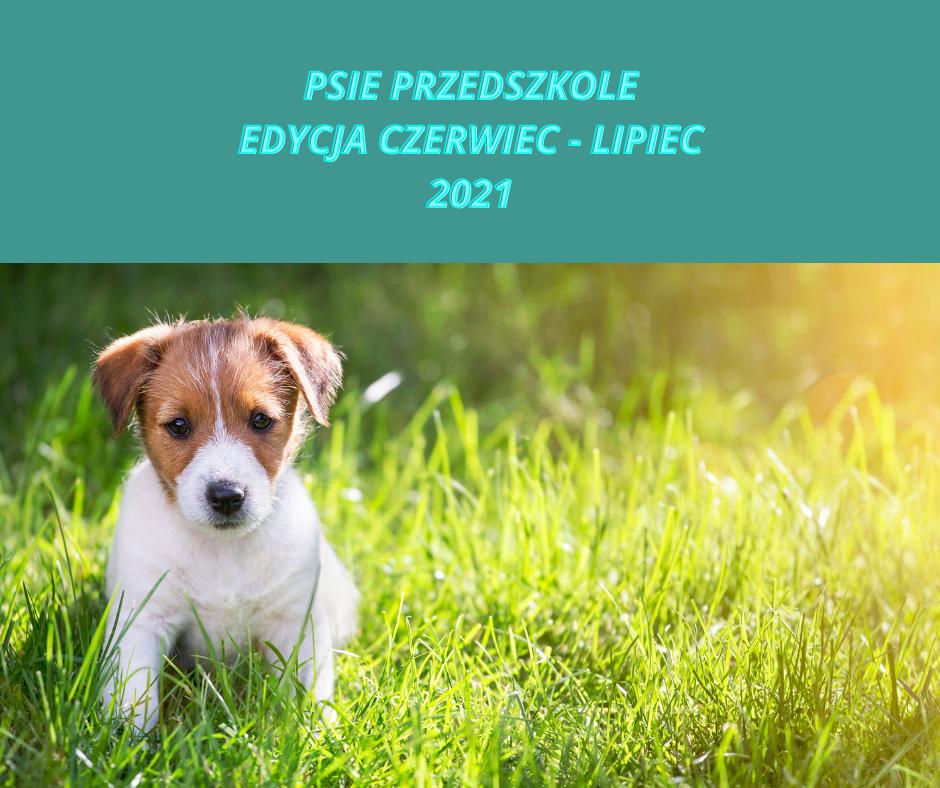 PSIE PRZEDSZKOLE - EDYCJA CZERWIEC - LIPIEC 2021